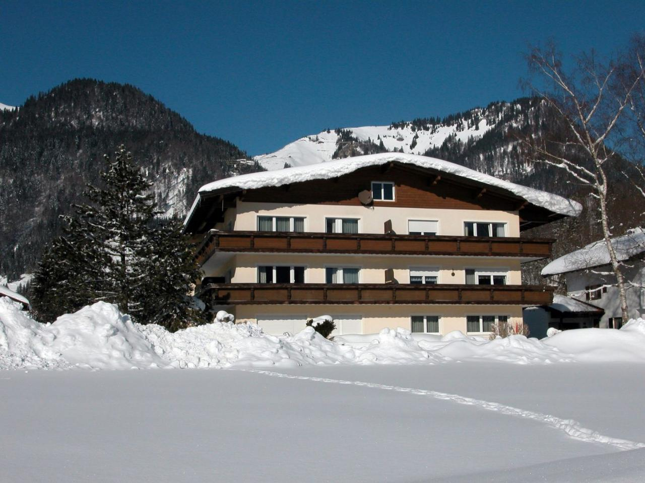 Appartment Tirolerhaus