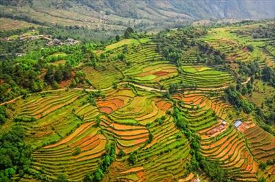 Nepál /Hotel dle programu/