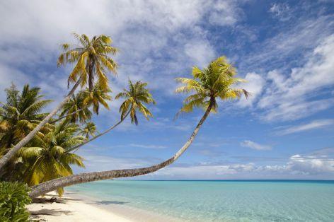 Melanésie a Polynésie - Fidži, Tonga, Samoa
