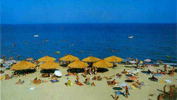 No name studia Paralia a Olympic beach