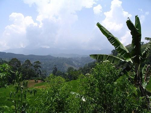 Srí Lanka trošku jinak