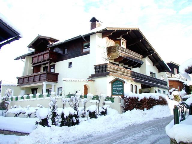 Vila Radič