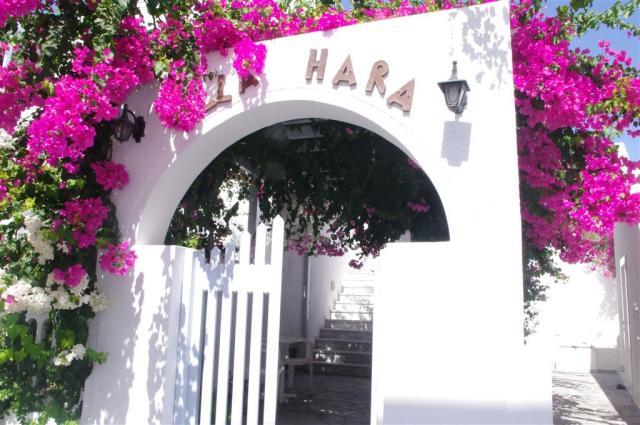 Studia Hara