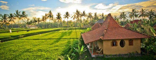 Bali a Gili s jógou - hotel Dragonfly Village