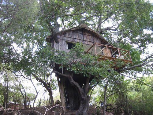 Luxusní Safari v Krugerově náridním parku