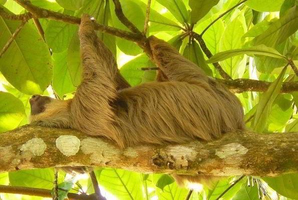 Přírodní krásy Kostariky, Nikaraguy a Panamy