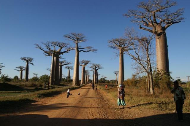Krásy nedotčené přírody Madagaskaru