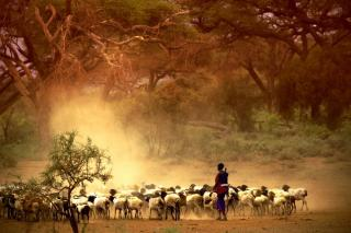 Objevování Mozambiku s návštěvou Svazijska a Krugerova parku