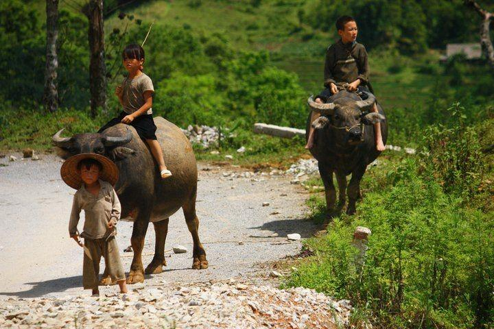 Cestování jižním Vietnamem