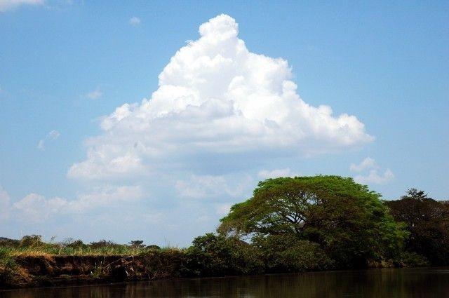 Exotická Kostarika s návštěvou přírodní rezervace Monteverde