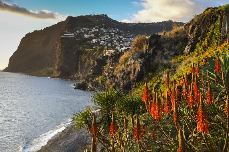 Madeira 55+ hotel Four Views Oásis
