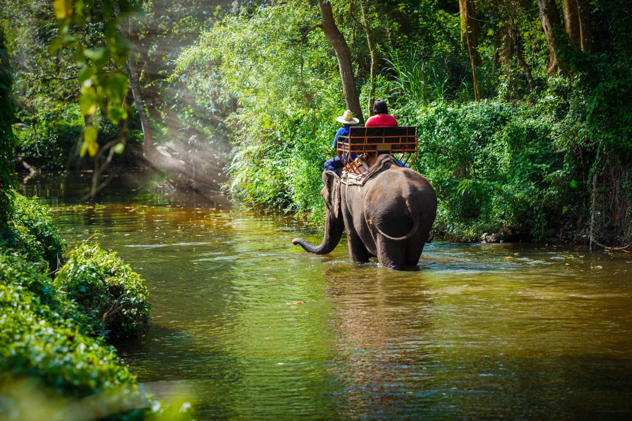 Zadní Indie: Thajsko, Malajsie, Singapur (Expedition)
