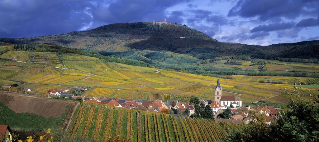 Alsasko, Švýcarsko a Černý Les