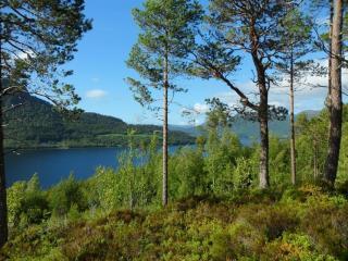 Rybaření ve fjordu nebo dovolená v Norsku - let 11