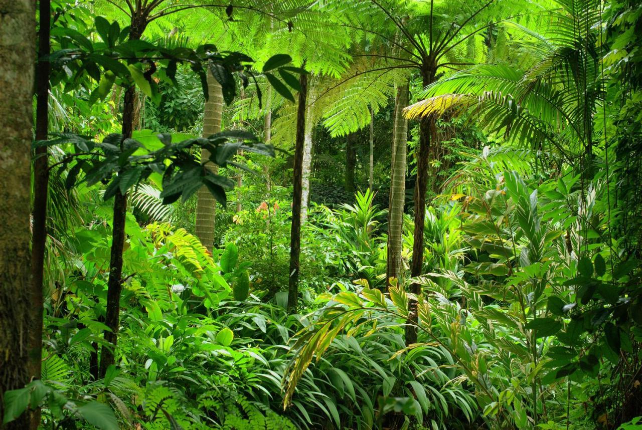 Okruh tropickým severem Austrálie