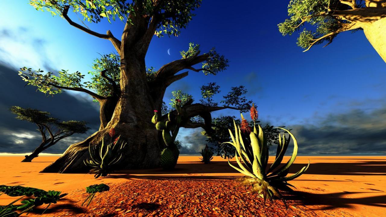 Národní parky jižní Afriky
