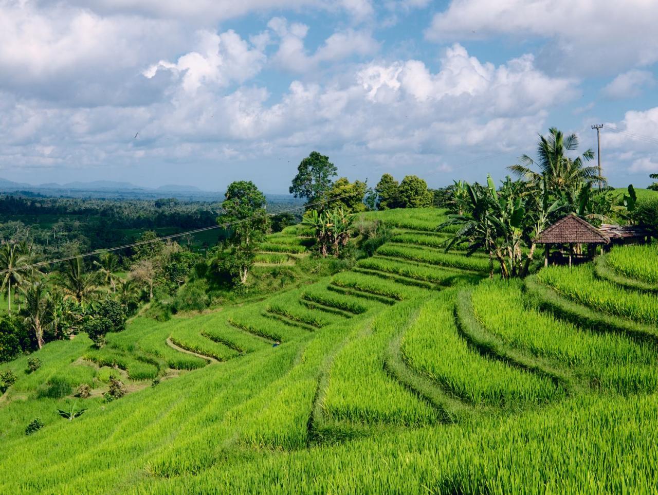 Cesta exotickou Indonésií: Bali – Lombok