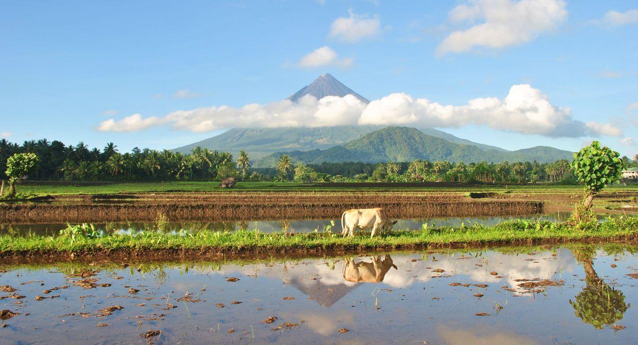 Filipíny aktivně a ekonomicky