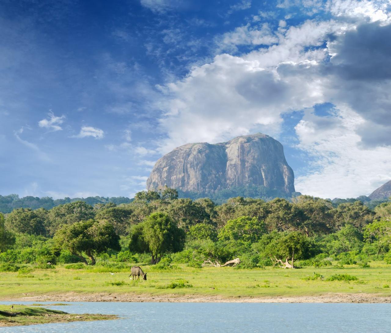 Přírodní krásy Srí Lanky