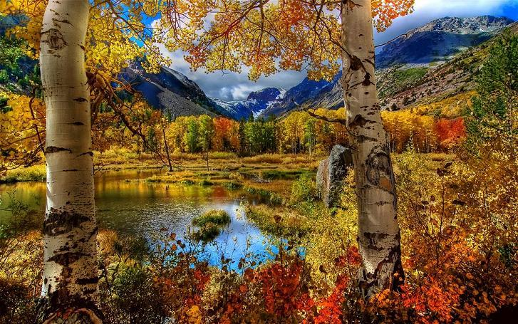 Malý okruh národními parky Kanady