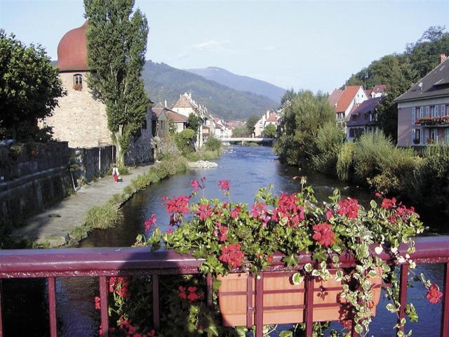 Alsasko a Černý les, zážitkový víkend na vinné stezce