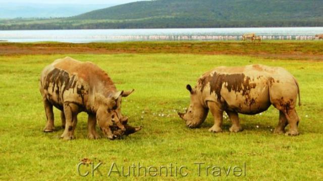 Autentický život v Keni a Safari v Masai Mara