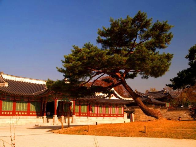 Nezapomenutelná Jižní Korea