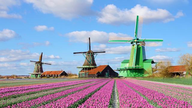 4-denní Amsterdam – Alkmaar – Zaanse Schans s ubytováním