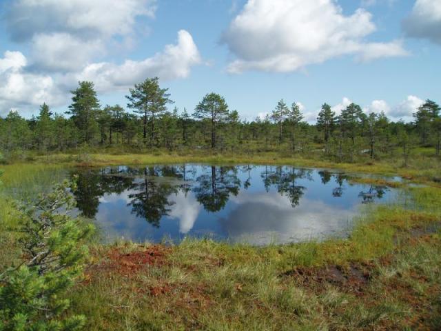 Přírodou Pobaltí a Helsinky