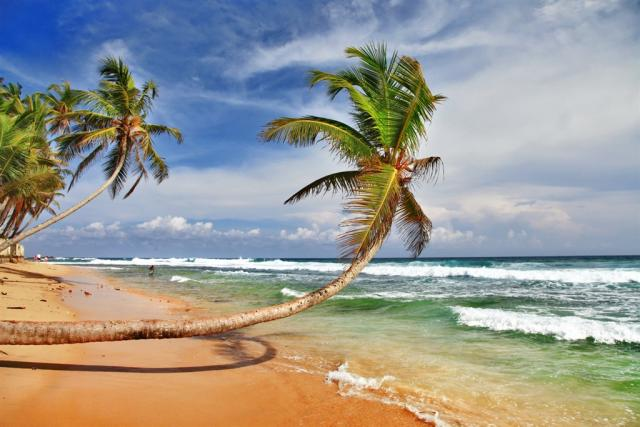 Srí Lanka, Maledivy - Cejlon - Tropický ráj zvířat Maledivy