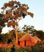 JAR, Botswana, (Zimbabwe) a Namibie