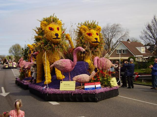 Rozkvetlé Holandsko