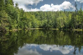 NP Šumava a Bavorský les - po hraničním chodníku