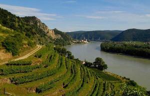 Z Vídně k soutoku řek Moravy a Dunaje