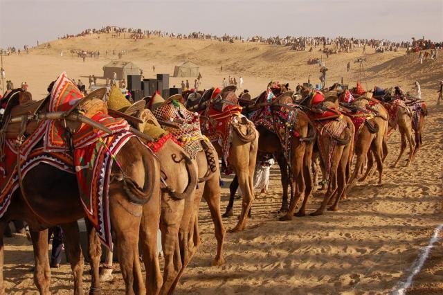 Luxusní Indie - Rajwada, Rajasthan