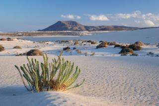 Kanárské ostrovy – Lanzarote a Fuerteventura