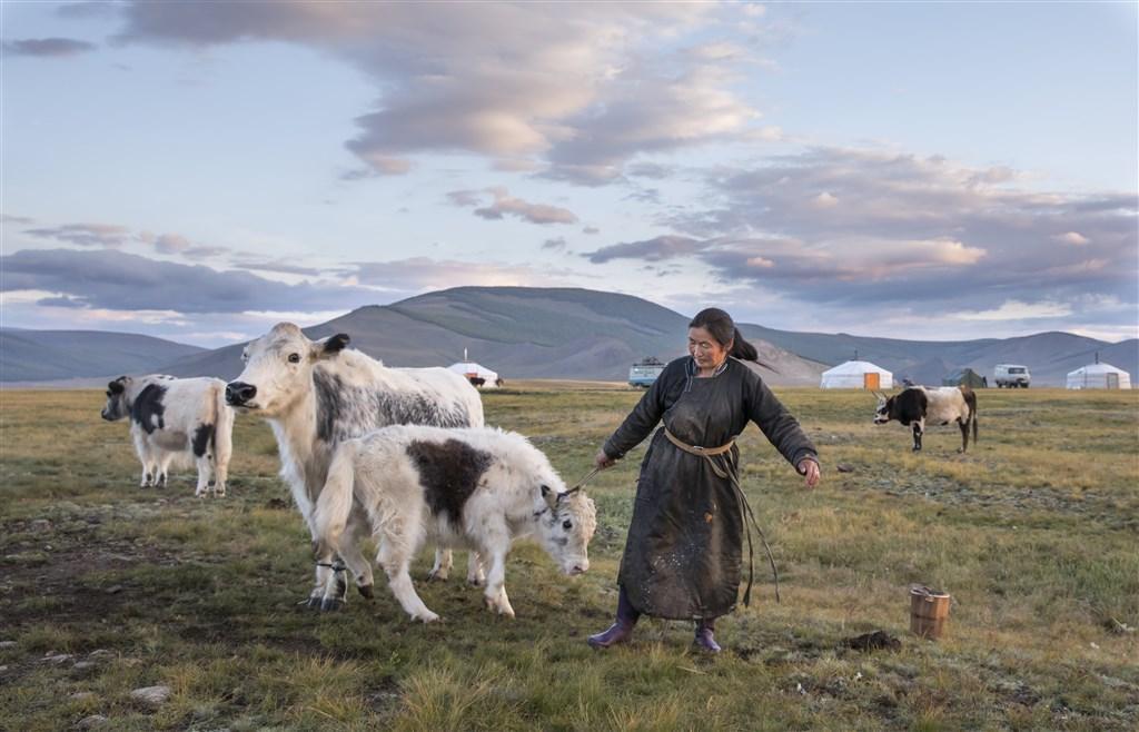 Mongolsko - chov hospodářských zvířat - Mongolsko Mongolsko  ce67f088a5
