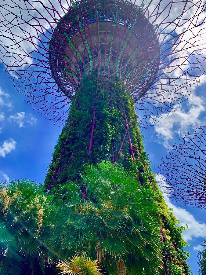 nejlepší místo pro seznamování v Singapururandění s národem islámu