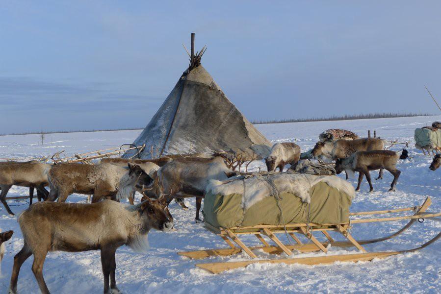 Sibiř v zimě - nejexotičtější kmeny - Rusko| Maxi zájezdy
